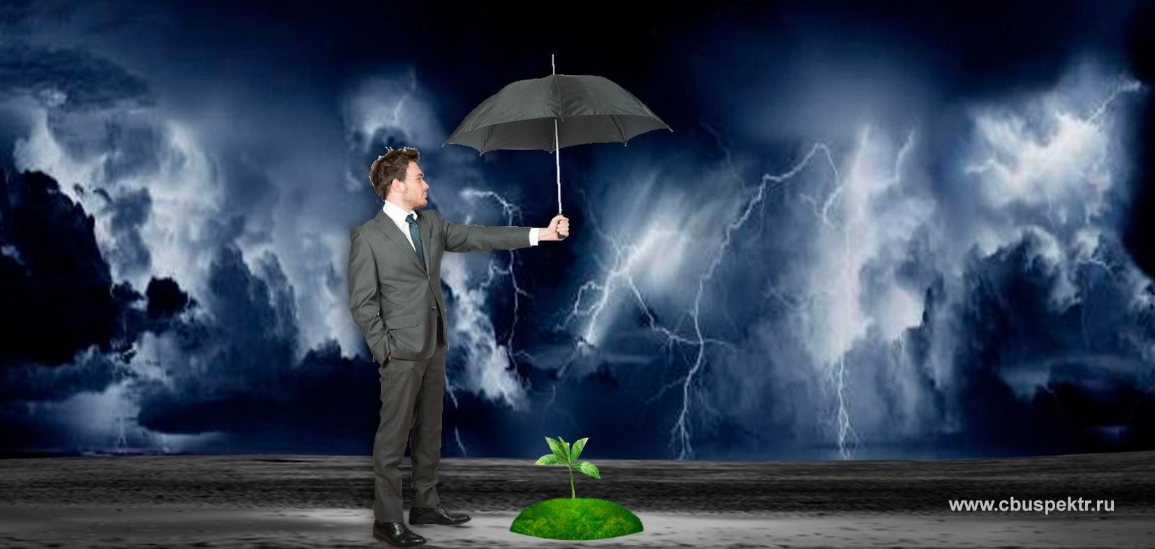 Мужчина в костюме зонтиком защищает росток от урагана